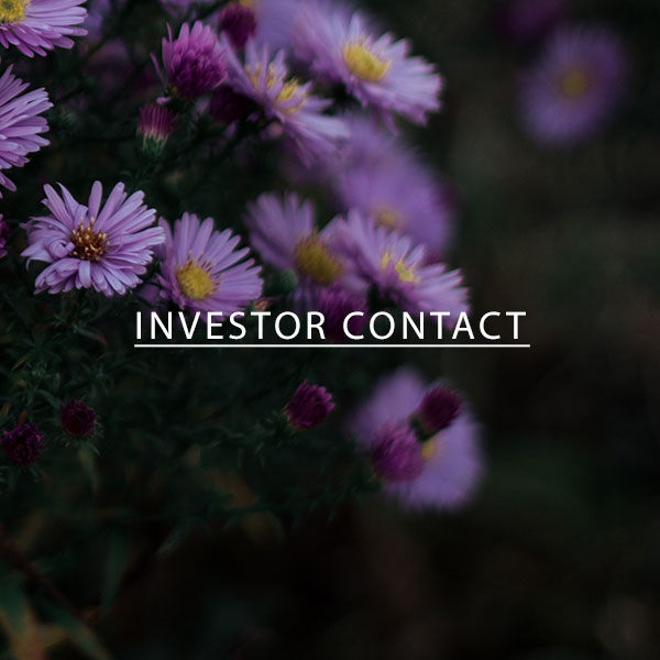 Investor-Contact